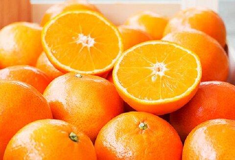 درمان کمخونی با مصرف این میوه پاییزی