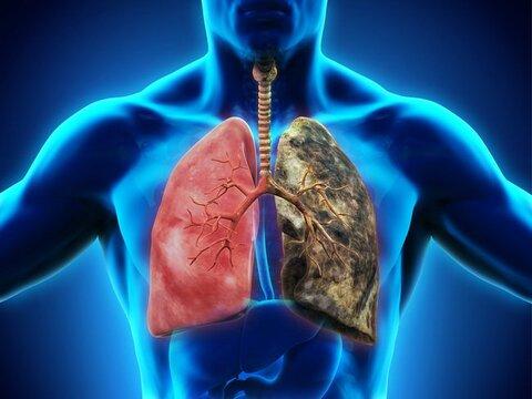 چگونه با افزایش سن ریهها را سالم نگه داریم؟