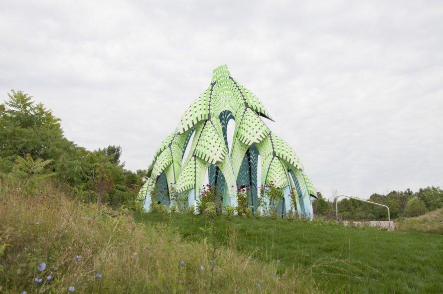 کاج آلومینیومی؛ نماد حفظ محیط زیست