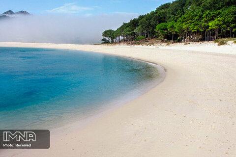 جزیره Islas Cíes در اسپانیا