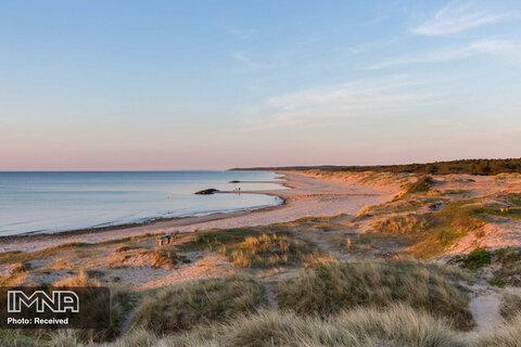 ساحل Tisvilde در دانمارک