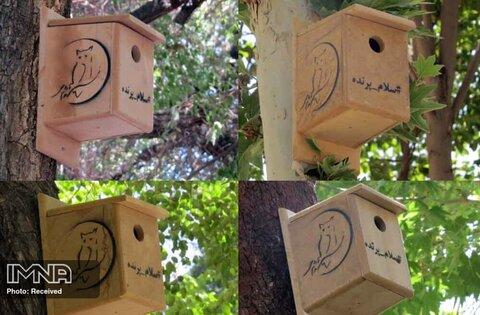 نصب ۳۵ لانه روی درختان چهارباغ برای پرندگان