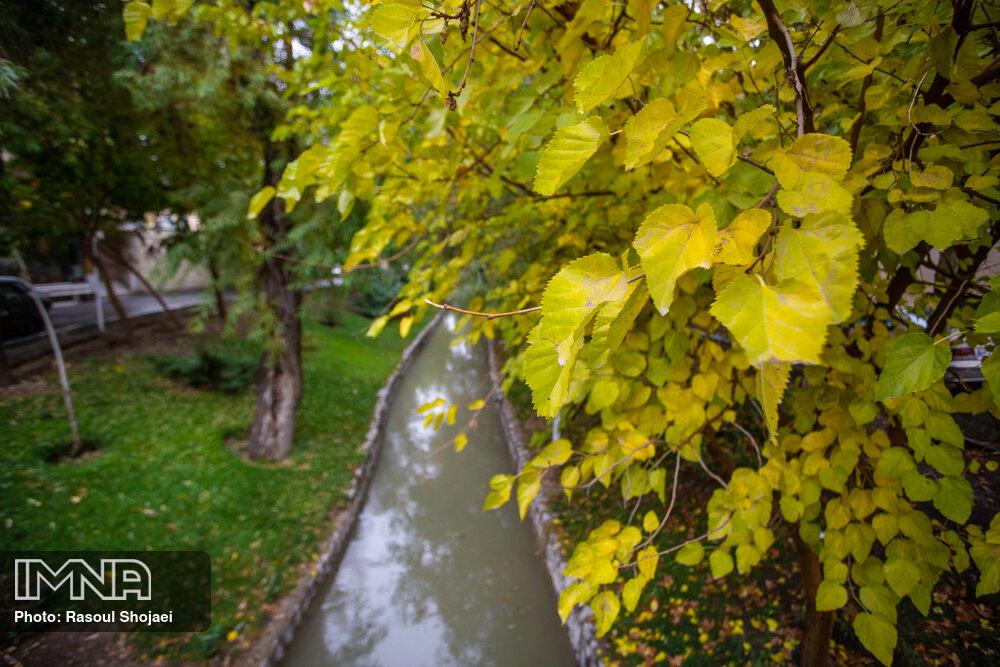 هوای اصفهان و شهرهای مجاور سالم است