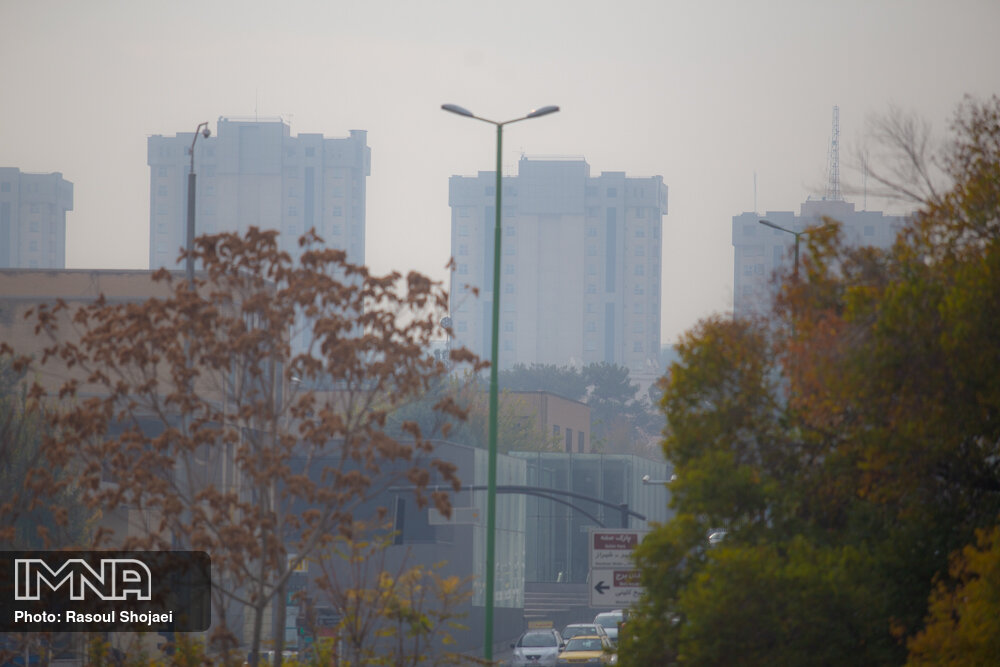 آلودگی هوا تنوع زیستی گیاهی و جانوری شهرها را از بین میبرد