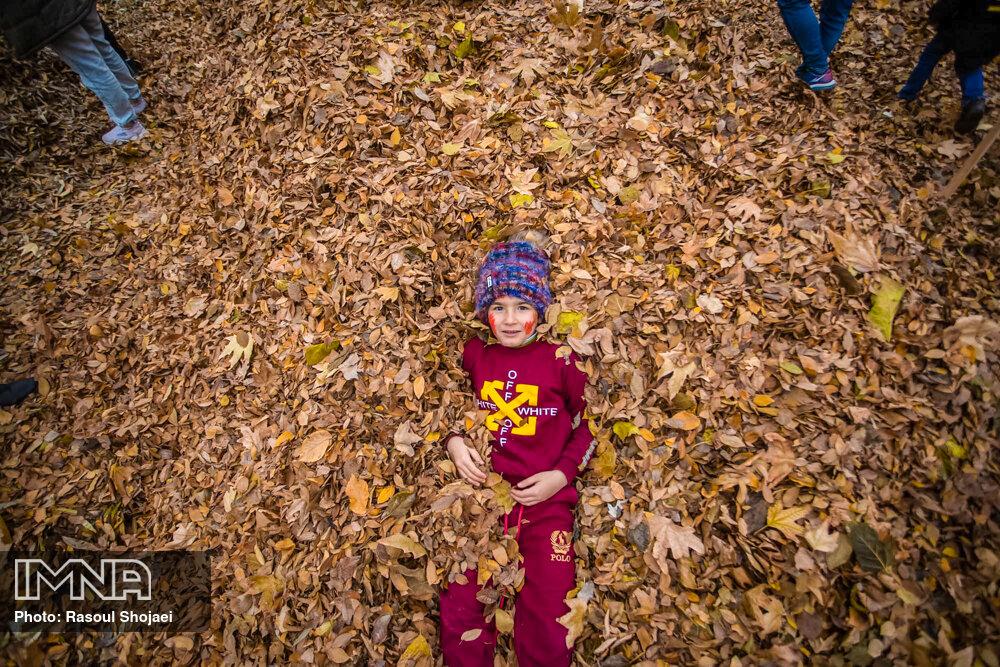 Autumn leaves festival in Isfahan