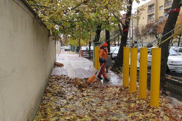 جمعآوری برگهای پاییزی از سطح شهر اصفهان