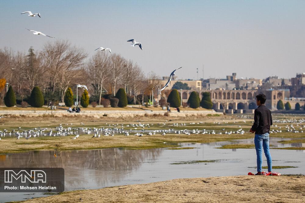 زایندهرود را ضعف مدیریت آب و مقاصد انسانی خشکاند