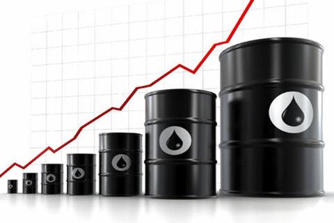 ابراز نگرانی ۱۳ سناتور آمریکایی از جنگ قیمت نفت