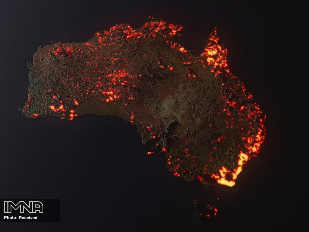 Australia's Bushfire; Wildlife Killer