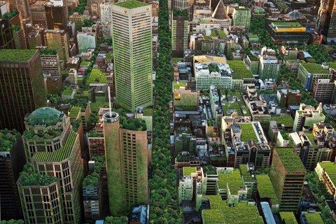 سقف بسیاری از شهرهای جهان در آینده سبز میشود!