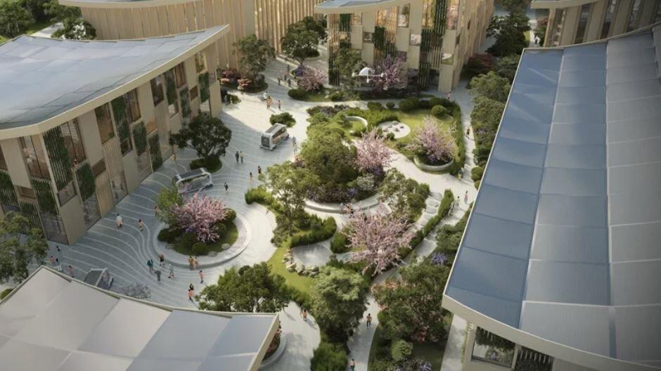 طراحی شهر پایدار و مدیریت سبز در دستورکار دانشگاهها قرار گیرد
