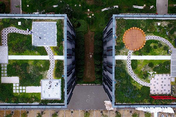 بام ساختمانهای شهر سبز میشود؟