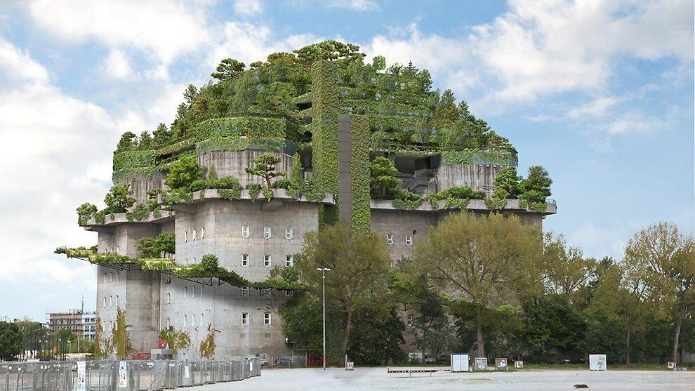افزایش محبوبیت سازههای سبز با سیستم زهکشی مناسب