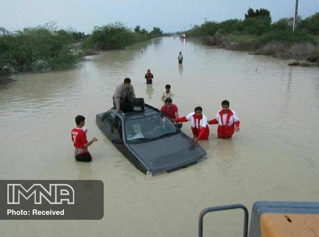 Warning Issued About Crocodiles In Iran's Flood-Stricken Southeast