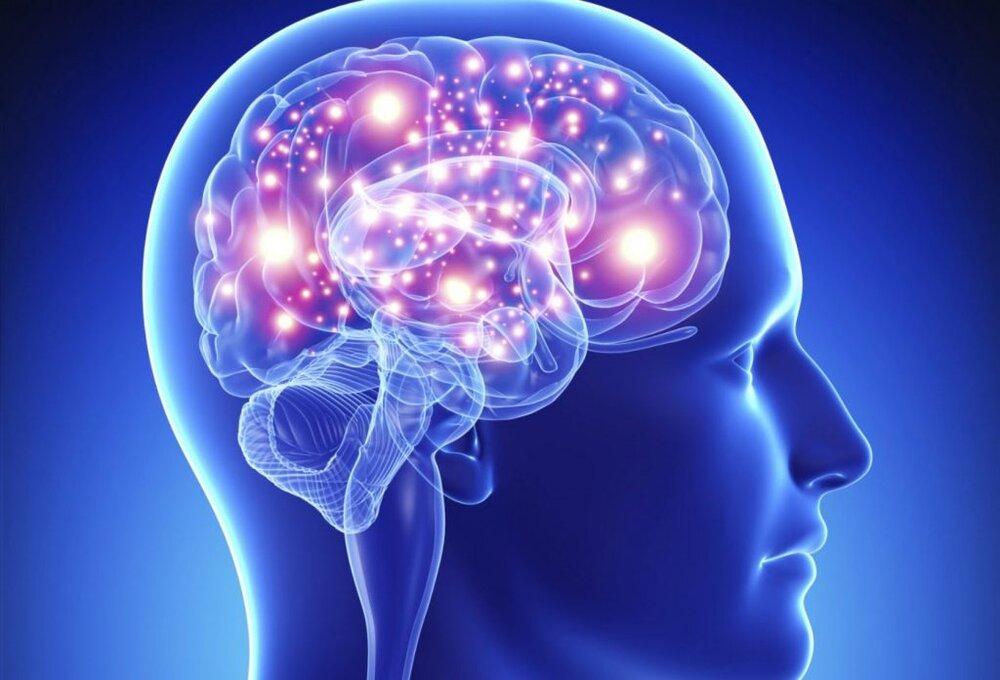 کمخوابی و پرخوابی چه تاثیری بر عملکرد مغز دارد؟