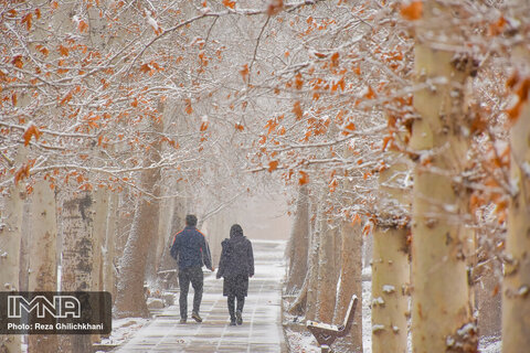 بارش برف در نجف آباد