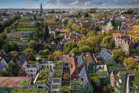 بامهایی که به پایداری شهرها کمک میکند