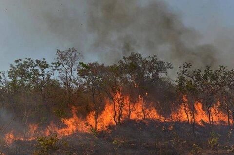 کوه خاییز در آتش می سوزد