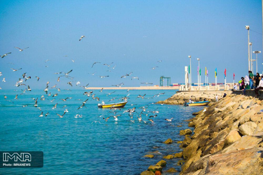 کرونا برنامههای روز بوشهر را لغو کرد