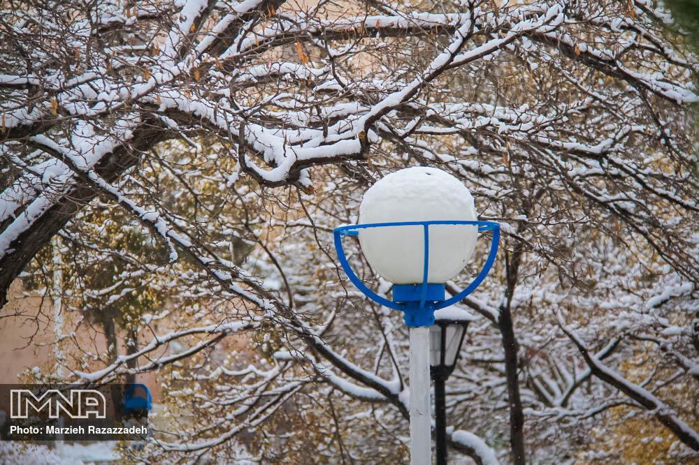 ادامه عملیات برف تکانی درختان و برف روبی معابر بوستانهای قزوین