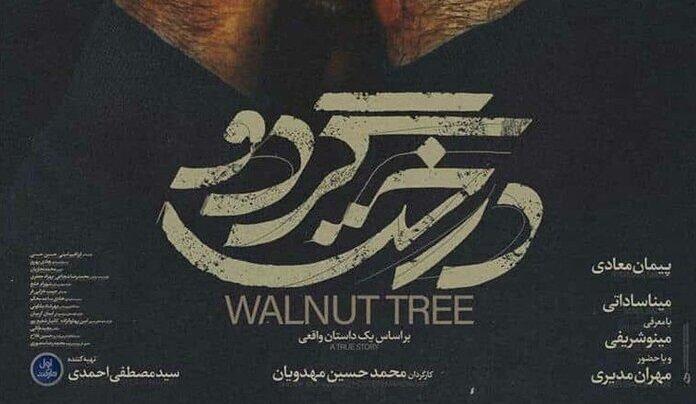 پوستر فیلم «درخت گردو» پیمان معادی رونمایی شد