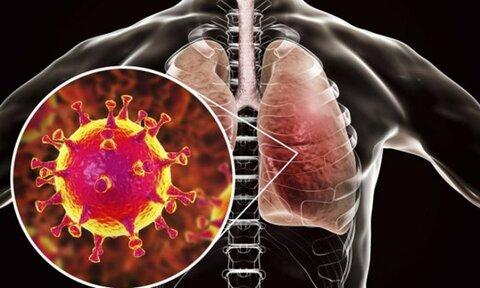 موارد ابتلاء به دلتای ویروس کرونا در امریکا به سرعت در حال افزایش است