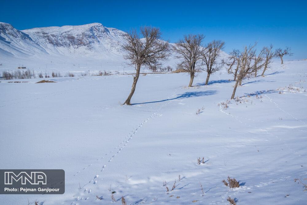 پیش بینی بارش برف در غرب و جنوب استان اصفهان