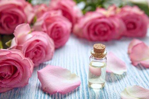 خواص دارویی گل محمدی چیست؟