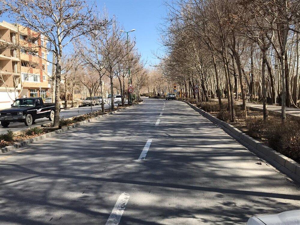 اجرای طرح پیرایش شهری در خیابان آیت الله کاشانی