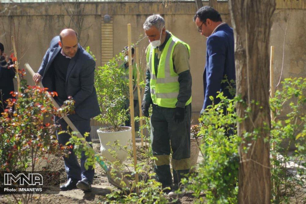 پویش درختکاری در خانه هنرمندان توانیاب