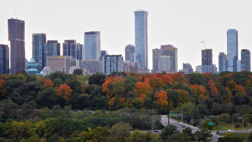 پیوند شهر و طبیعت در تورنتو