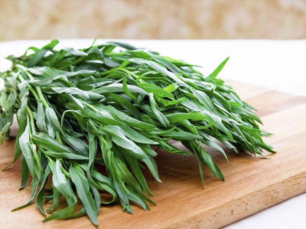گیاه ترخون چه خواصی دارد؟