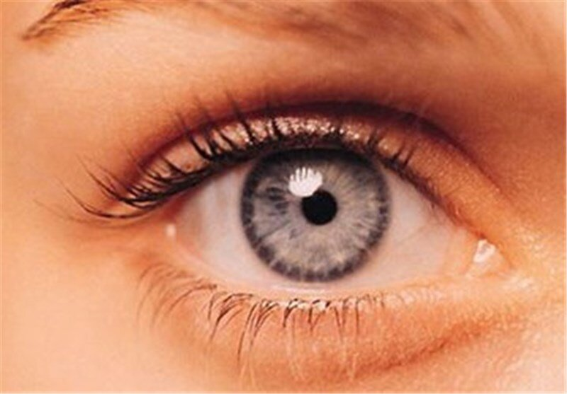 تولید پانسمان چشمی با سلول بنیادی جفت جنین
