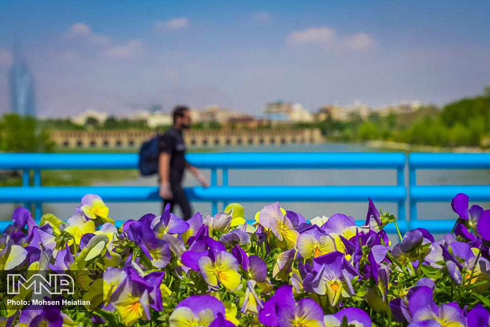 قاب بهاری اصفهان