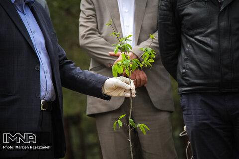 توسعه فضای سبز از مهمترین اهداف شهر کرج است