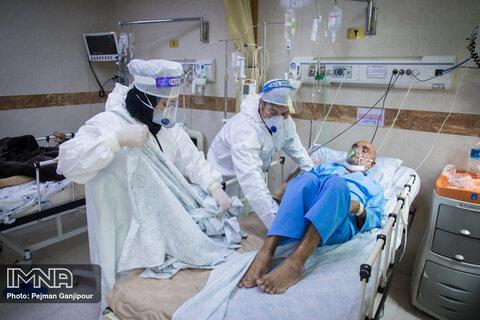 Coronavirus kills 247 more in Iran over past 24 hours