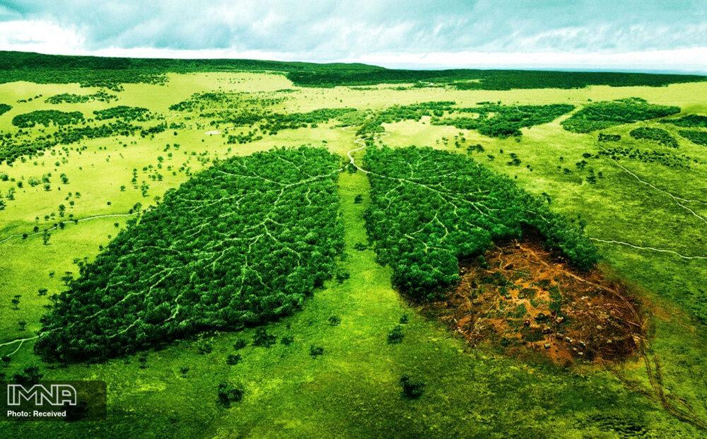 پایدار کردن اقلیم چه اقداماتی نیاز دارد؟