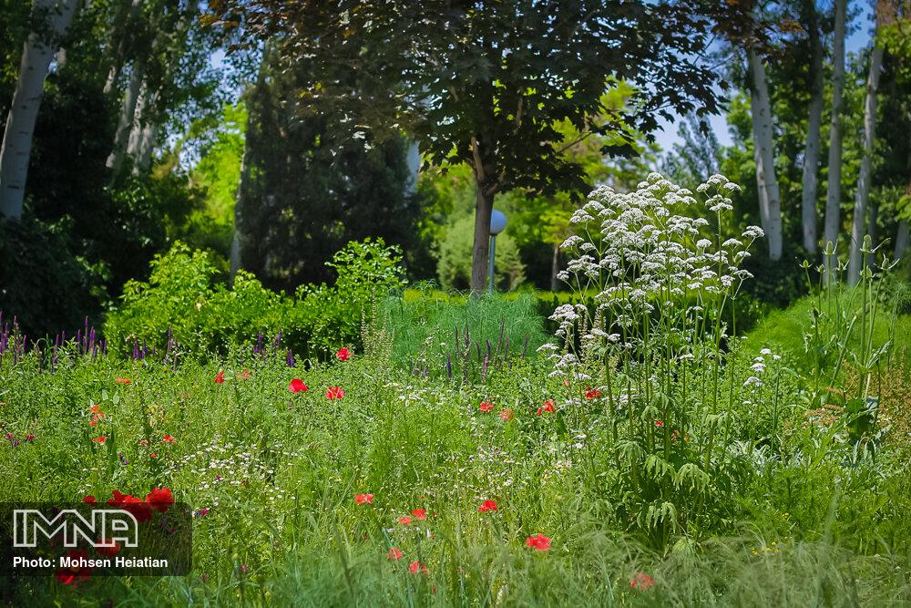 ثبت پلاک با نام افراد در باغهای زندگی و خاطره مشهد