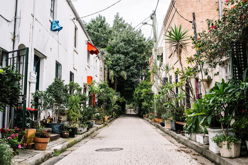کرونا شهرها را سبز کرد
