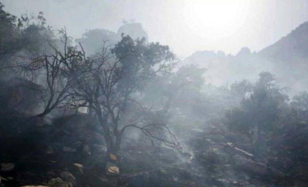 مهار آتشسوزی دوباره در خائیز/ به حیاتوحش آسیب نرسید