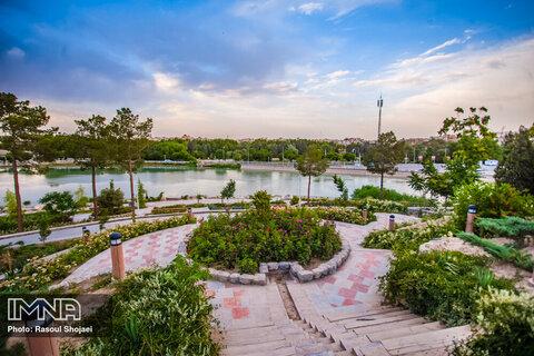 کاشت ۶۳ گونه گیاهی در پردیس هنر اصفهان