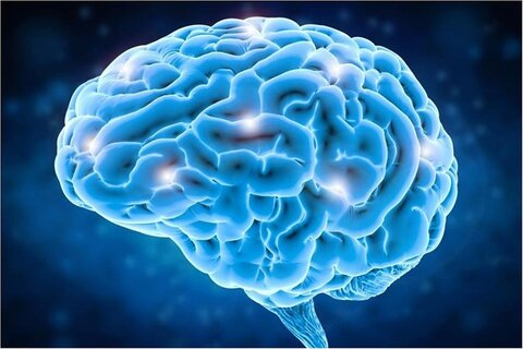 آخرین دستاوردهای نقشهبرداری مغز ارائه میشود