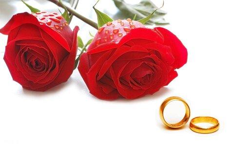 کاهش ۴.۹ درصدی آمار ازدواج/وقوع ۲۱۶ تولد در ۹ ماهه امسال
