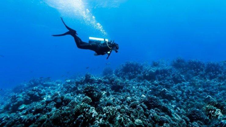 وای فای زیر آب!