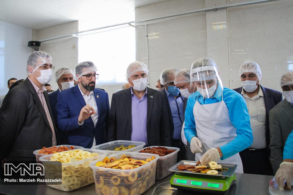 بهره برداری از نخستین واحد تولیدی چیپس میوه و سبزیجات خشک اصفهان