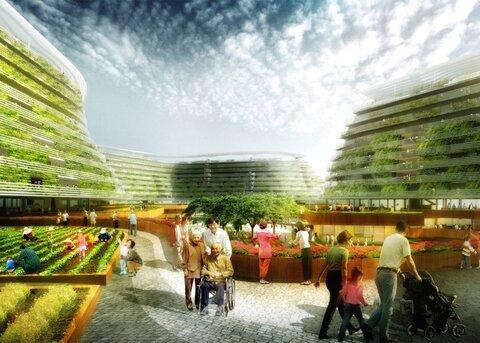 خانههای سالمندان در سنگاپور سبز میشود