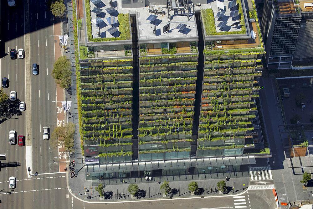نحوه طراحی شهرهای بیوفیلیک آبی