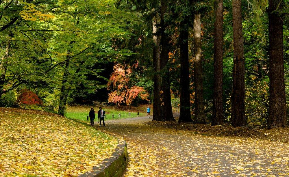 قدردانی از پارکها و فضاهای سبز در دوران کرونا