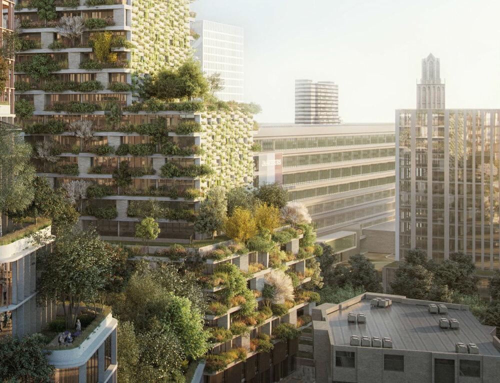 جنگل شهری ضامن بقای شهرهای آینده