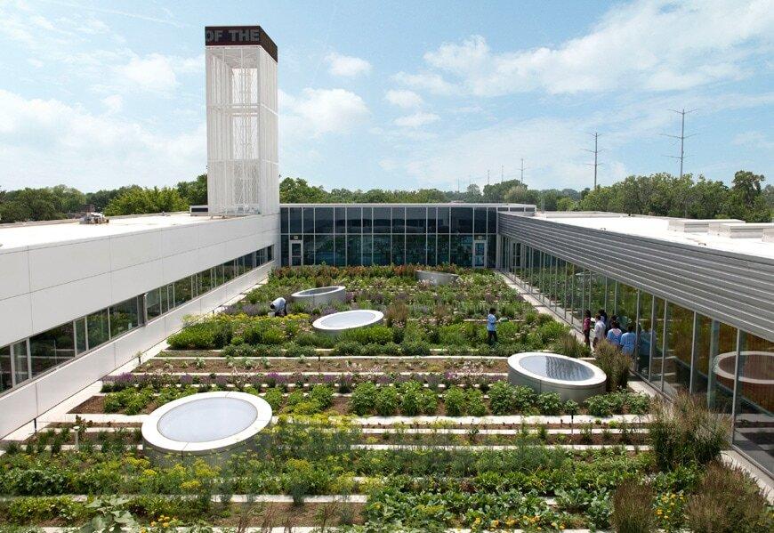 سبز بامها؛ فناوری نوین در معماری شهرها